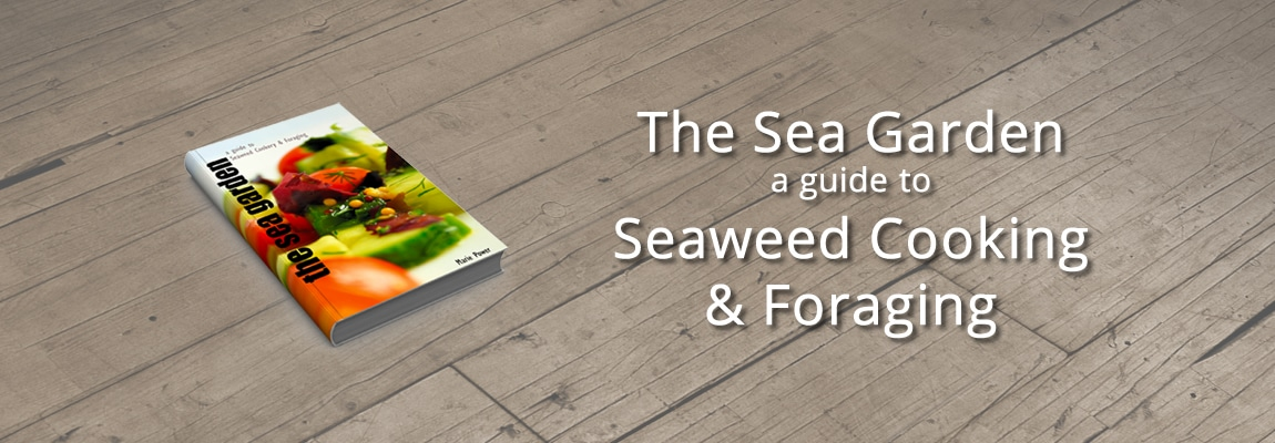 A guide to Seaweed Cooking & Foraging